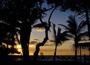 hawaii-wikimedia