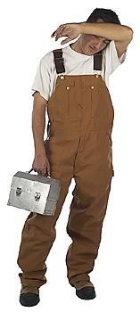 toolmanwipebrow-a2d
