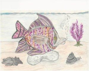 fish-color--sm-donna